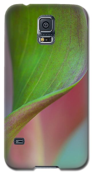 Galaxy S5 Case featuring the photograph Curves Of A Calla Lily by Zoe Ferrie