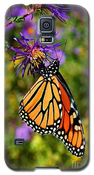 Custom Butterfly Waltz Galaxy S5 Case by Diane E Berry