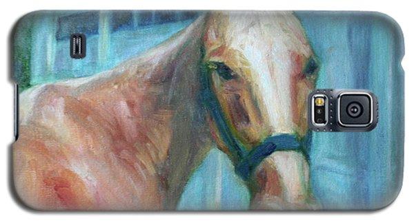 Custom Pet Portrait Painting - Original Artwork -  Horse - Dog - Cat - Bird Galaxy S5 Case