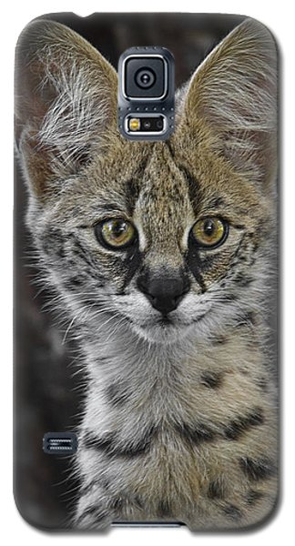 Cute As A Button Galaxy S5 Case