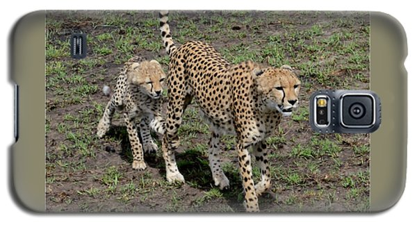 Galaxy S5 Case featuring the photograph Cute Cheetah Wait For Me Mommy by Tom Wurl