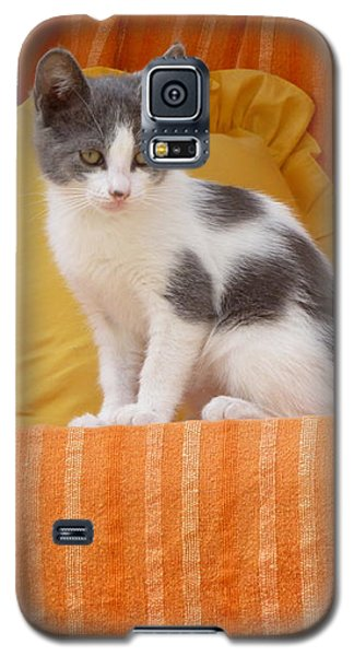Cute Kitty Galaxy S5 Case by Vicki Spindler