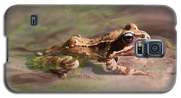 Cute Litte Creek Frog Galaxy S5 Case