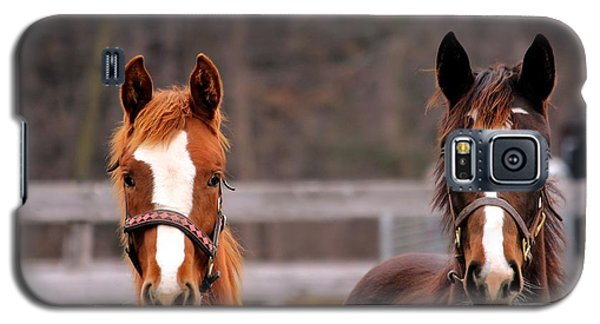 Cute Yearlings Galaxy S5 Case