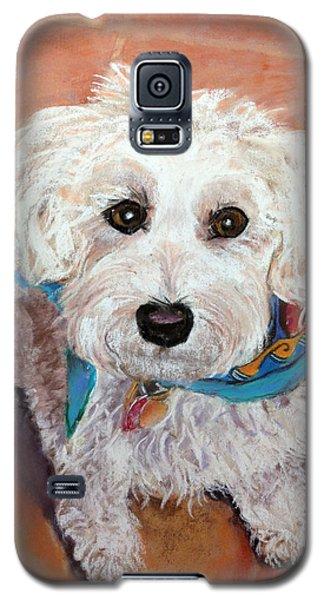 Cutie With Bandana Galaxy S5 Case by Julie Maas