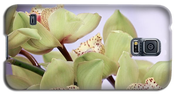 Cymbidium Orchids  Galaxy S5 Case