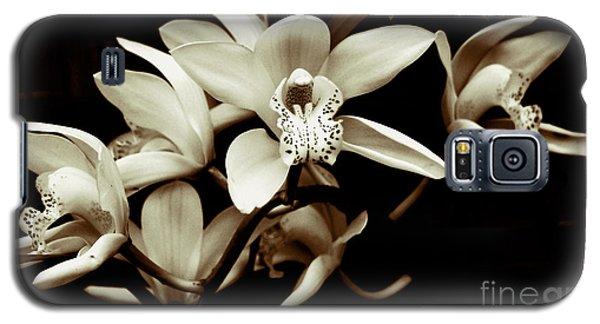 Cymbidium Orchids Galaxy S5 Case