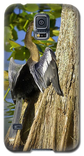 Cypress Bird Galaxy S5 Case