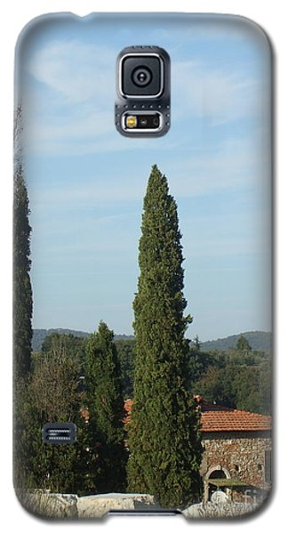 Cypress In Rapolano Galaxy S5 Case