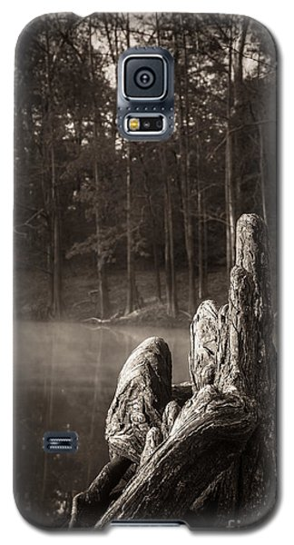 Cypress Knees In Sepia Galaxy S5 Case