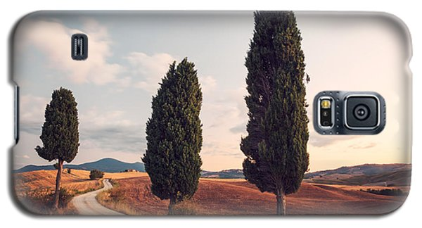 Cypress Lined Road In Tuscany Galaxy S5 Case by Matteo Colombo
