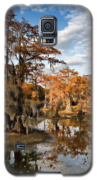 Cypress Rust Galaxy S5 Case by Lana Trussell