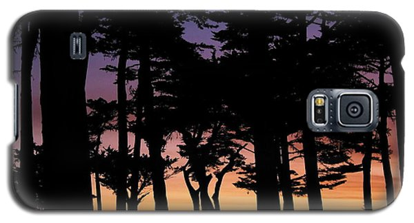 Cypress Sunset Galaxy S5 Case