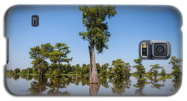 Cypress Tree Covered In Spanish Moss Galaxy S5 Case