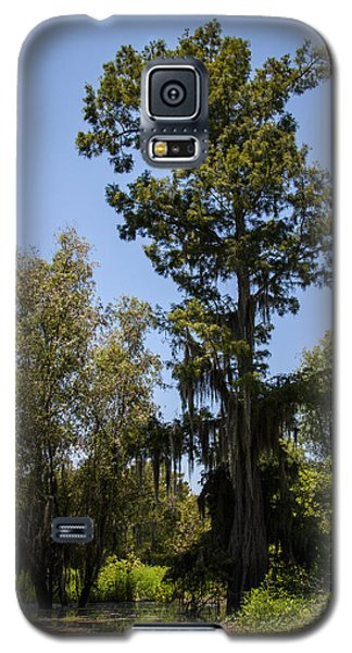 Cypress Tree With Moss Galaxy S5 Case