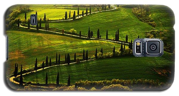 Cypresses Alley Galaxy S5 Case