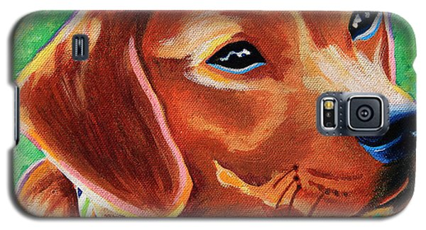 Dachshund Beagle Mixed Breed Dog Portrait Galaxy S5 Case