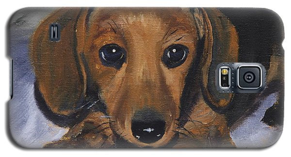 Dachshund Puppy Galaxy S5 Case by Alan Mager