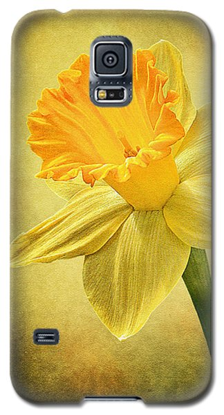 Galaxy S5 Case featuring the photograph Daffodil by Ann Lauwers