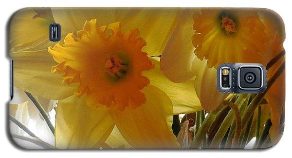 Daffodil Bouquet Galaxy S5 Case by Karen Molenaar Terrell