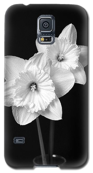 Daffodil Flowers Black And White Galaxy S5 Case