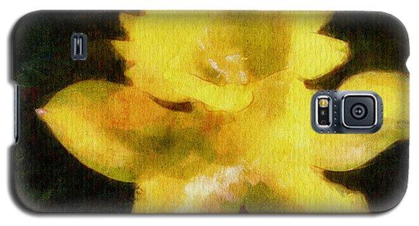 Daffodil Galaxy S5 Case by Greg Collins