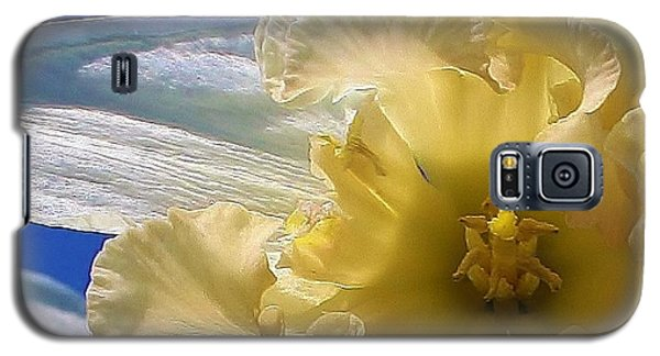 Galaxy S5 Case featuring the photograph Daffodil In The Sun by Bruce Bley