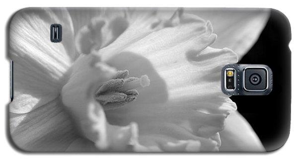 Daffodil Galaxy S5 Case by Kelly Nowak
