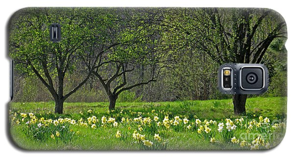 Galaxy S5 Case featuring the photograph Daffodil Meadow by Ann Horn