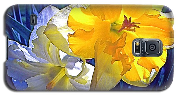 Galaxy S5 Case featuring the photograph Daffodils 1 by Pamela Cooper