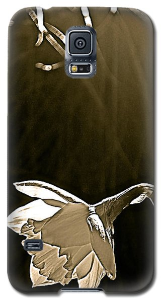 Daffodils 2 Galaxy S5 Case by Pamela Cooper