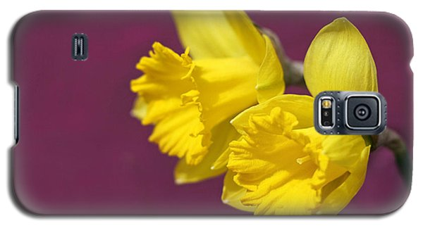 Galaxy S5 Case featuring the photograph Daffodils by Barbara West