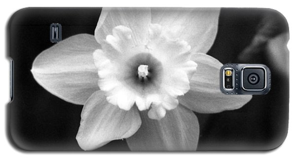 Daffodils - Infrared 01 Galaxy S5 Case