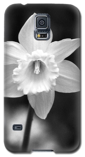 Daffodils - Infrared 10 Galaxy S5 Case