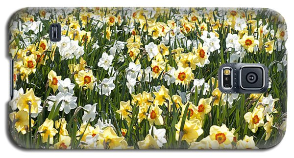 Galaxy S5 Case featuring the photograph Daffodils by Lana Enderle