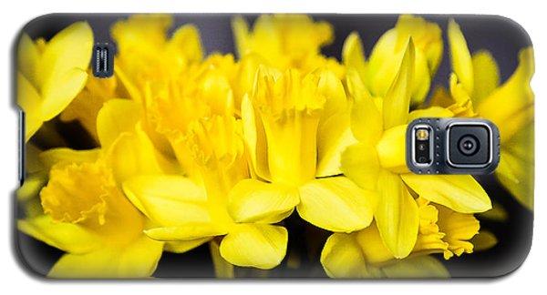 Daffodils Galaxy S5 Case