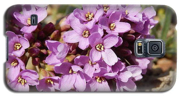 Galaxy S5 Case featuring the photograph Dagger Pod Flowers by Jenessa Rahn