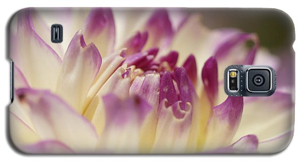Galaxy S5 Case featuring the photograph Dahlia 2 by Rudi Prott