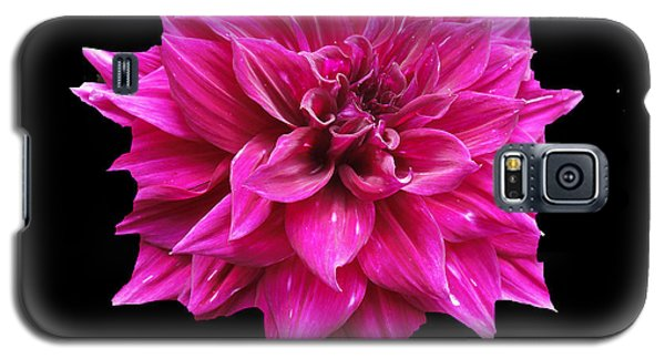 Galaxy S5 Case featuring the photograph Dahlia Blossom by Frederic Kohli
