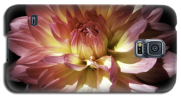 Dahlia Burst Of Pink And Yellow Galaxy S5 Case