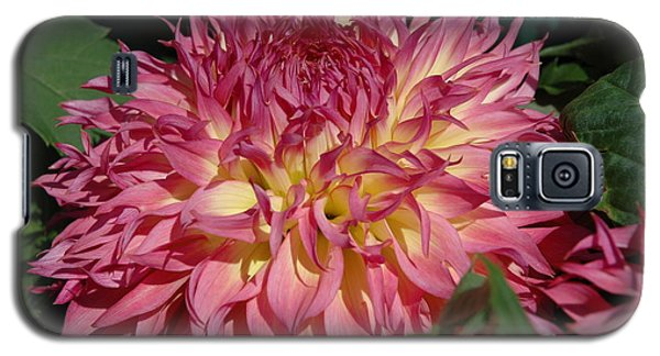 Galaxy S5 Case featuring the photograph Dahlia by Christiane Hellner-OBrien