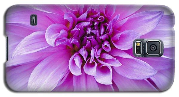 Dahlia Dahling Galaxy S5 Case