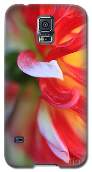 Galaxy S5 Case featuring the painting Dahlia Edges by Jeanette French