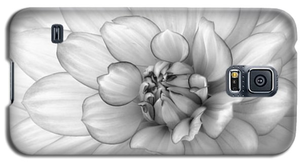 Dahlia Flower Black And White Galaxy S5 Case