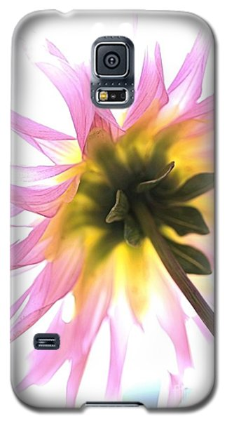 Galaxy S5 Case featuring the photograph Dahlia Flower by Joy Watson