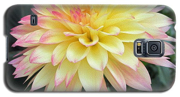 Dahlia Galaxy S5 Case by Kathie Chicoine