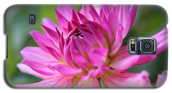 Galaxy S5 Case featuring the photograph Dahlia by Lynn England