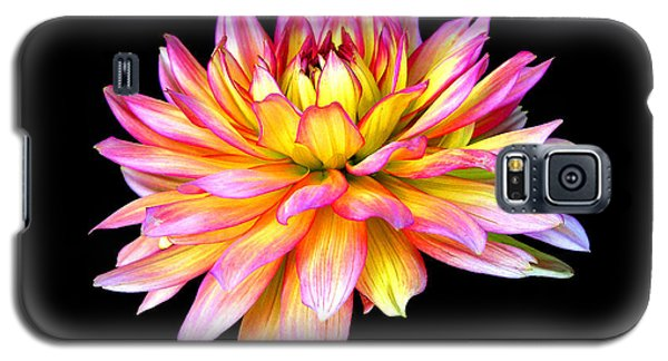 Galaxy S5 Case featuring the photograph Dahlia by Mariarosa Rockefeller