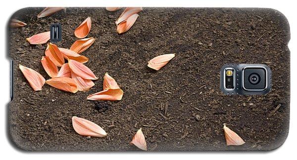 Dahlia Petals Galaxy S5 Case