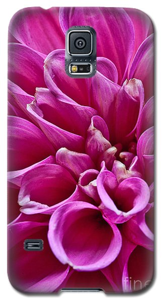 Galaxy S5 Case featuring the photograph Dahlia by Shirley Mangini